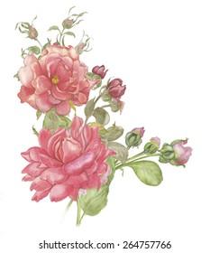 Fiori Bianchi Simili A Rose.Immagini Foto Stock E Grafica Vettoriale Simili A Tema Fiori Rosa