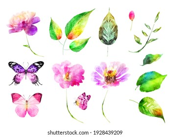 Watercolor flowers leafs and butterflies, isolated on white background. Set