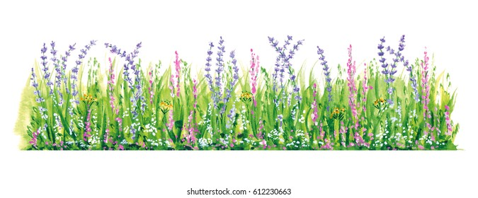 Watercolor Flowers, Natural floral border. Hand drawn painted plants, grass, part of the frame, the colorful artistic element for illustration and design cards, books, brochures on a white background