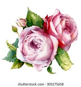 watercolor flowers; roses