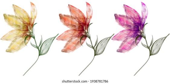watercolor flowers set design floral