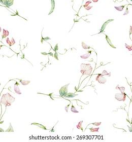 Watercolor, flowers, sweet peas, pattern, background, wallpaper, pale, pink