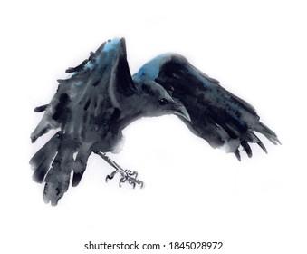 Watercolor Flying Crow Raven Bird Painting