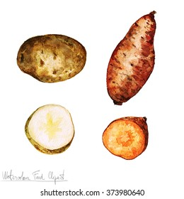 Watercolor Food Clipart - Potato