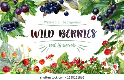 Watercolor frame of berries on a white background. Stone berry, raspberries, strawberries, lingonberries, gooseberry, black currant, aronia
