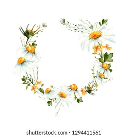 Watercolor frame with camomiles, celandine and green leaves. Hand drawn illustration of tender meadow  flowers on white background