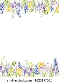 Watercolor frame of spring flowers: crocuses, muscari, leaves. Handwritten illustration for your holiday design.