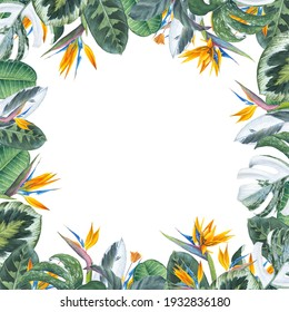 Watercolor frame. Tropical leaves and strelitzia. Hand-drawn illustration. Image for invitation, postcard, business card, florist shop, lettering, logo. Floral theme.