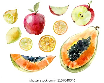 Watercolor fruit set. Papaya, lemon, apple cut in halves and slices isolated on white background. Tropical fruit in cross section. Watercolor painting. Hand painted illustration.