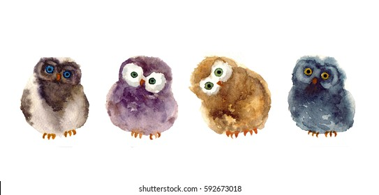Watercolor funny sketch owl. art illustrations sketch