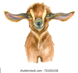 Watercolor Goat head isolated on white background. Hand drawn watercolor goat perfect for design greating card or t-shirt print.