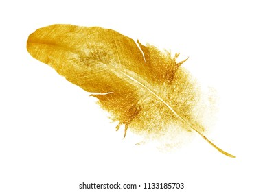 Watercolor golden feather