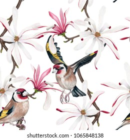 Watercolor Goldfinch & Royal Star Magnolia flower seamless pattern on white background. Pastel Brown, Pink, Yellow & White backdrop. Cloth & rug design. Oriental style. Hand drawn illustration.