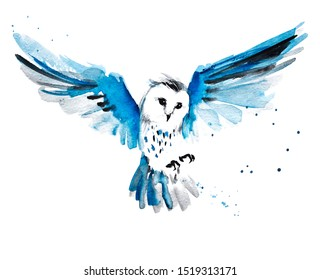 Watercolor graphic hand drawn flying owl with the gray and blue feathers 19
