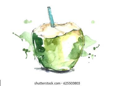 Watercolor green coconut.