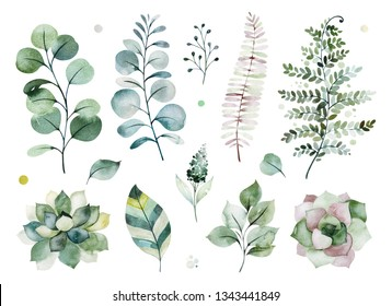 Watercolor green collection.Texture with greens,succulents,leaves,fern leaves,foliage.Perfect for wedding,invitations,greeting cards,quotes,patterns,bouquets,logos,Birthday cards,your unique creation.
