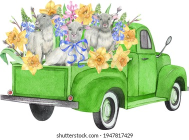 Watercolor green Easter truck. Retro truck with lamb, spring flowers and leaves. Vintage truck. Narcissus, tulips, hyacinth, daffodils, green leaves