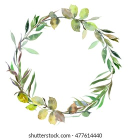 Watercolor  green  leaves wreath leaf boarder simple leafy  hand painted  isolated on white background frame wedding baby shower invitation cards save the date .