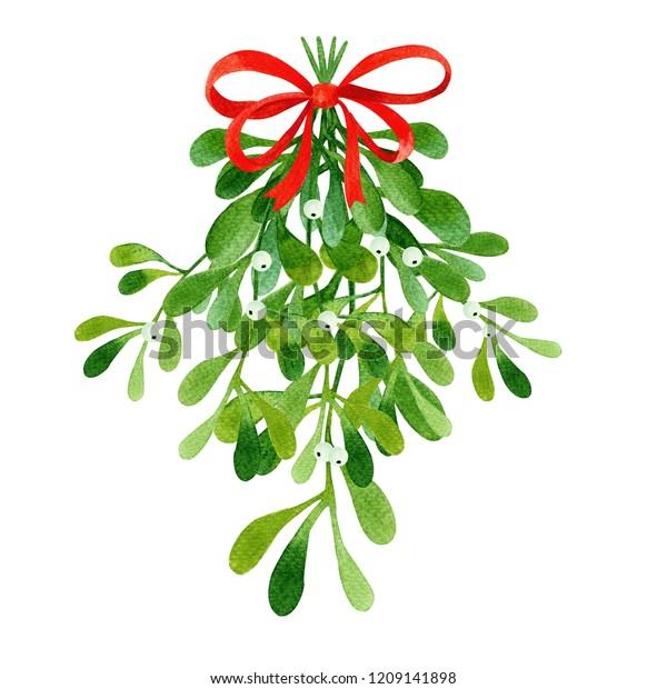 mistletoe deutsch