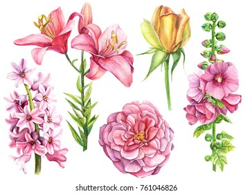 watercolor hand drawing, elegant flowers for invitation, holiday postcard, greeting card, poster