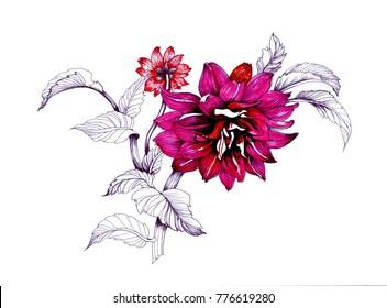 Watercolor hand drawn beautiful flowers
