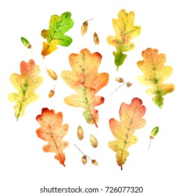 Watercolor hand drawn bright oak leaves set