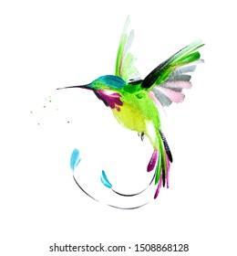 Сolorful watercolor hand drawn flying  hummingbird 61
