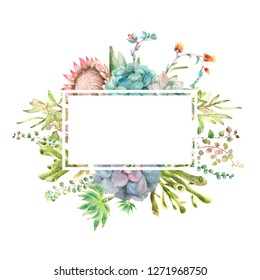 Watercolor hand drawn greeting card template. From succulent plants isolated on white background with place for text.