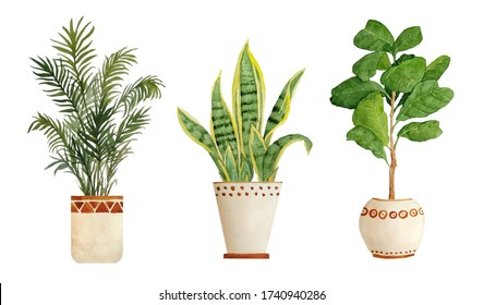 Watercolor hand drawn illustration elements of areca parlor palm sanseviera snake plant fiddle leaf tree ficus. Pot beige terra cotta clay potted for urban jungle nature lovers indoor houseplants