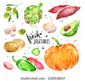 Watercolor hand drawn illustration set of fresh vegetables whole and sliced with paint smudges and splashes.