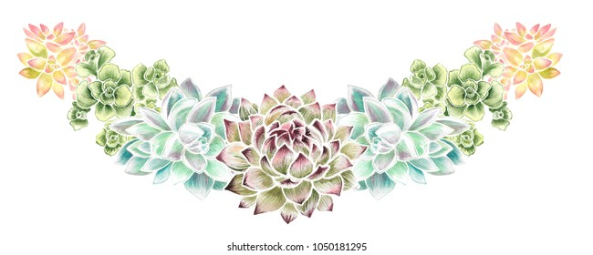 Watercolor hand drawn illustration of succulent vignette isolated on a white background.