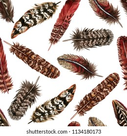 Watercolor hand drawn seamless pattern with red and brown bird feathers. Colorful boho collection isolated on white background