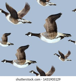 watercolor hand drawn seamless pattern with Canada goose geese flying in sky neutral calm soft natural colors grey brown ochre white endangered species for nature lovers birds animals in wood forest