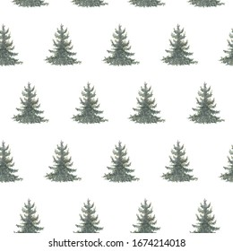 Watercolor hand drawn seamless pattern with spruce trees. Coniferous forest print isolated on white background good for wallpaper, textile, print etc.