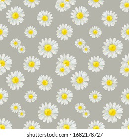 Watercolor hand drawn seamless pattern with wild meadow flower chamomile isolated on beige background. Good for textile, wrapping paper, background, summer design etc.