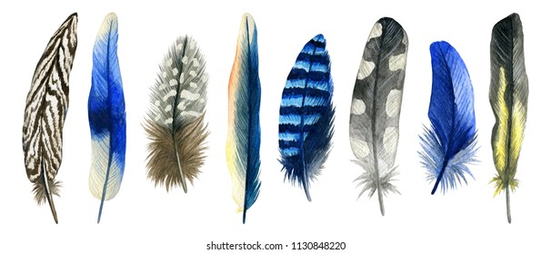 Watercolor hand drawn set of blue and grey bird feathers. Colorful boho collection isolated on white background