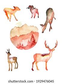 Watercolor hand drawn set of deer