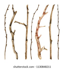 Watercolor hand drawn set of dry tree branches. Colorful collection of sticks and twigs on a white background