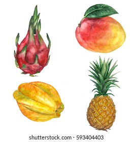 Watercolor hand drawn set of exotic fruits. Tropical fruits. Dragon fruit, starfruit, mango, pineapple isolated on white background