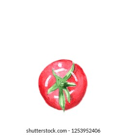 Watercolor hand drawn tomato isolated on white background
