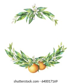 Watercolor hand drawn wreath fruit orange branch isolated on white background. Illustration for design wedding invitations, greeting cards. Spring or summer flowers with space for your text.