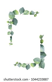 Watercolor hand painted banner with green eucalyptus leaves and branches. Spring or summer flowers for invitation, wedding or greeting cards.