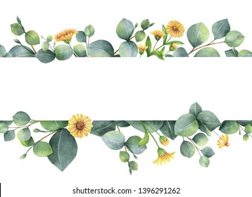 Watercolor hand painted banner with green eucalyptus leaves and field flowers. Healing Herbs for cards, wedding invitation, posters, save the date or greeting design isolated on white background.