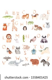Watercolor hand painted cute latin animal alphabet. Modern trendy lettering elements isolated on white. ABC symbol perfect print poster. Design for baby shower nursery. Alphabet with animals children