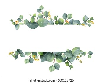 Watercolor hand painted green floral banner with silver dollar eucalyptus isolated on white background. Healing Herbs for cards, wedding invitation, posters, save the date or greeting design.