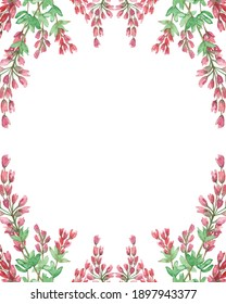 Watercolor hand painted nature herbal border frame with pink blossom heather flowers and green leaves composition on the white background for invite and greeting card with space for text