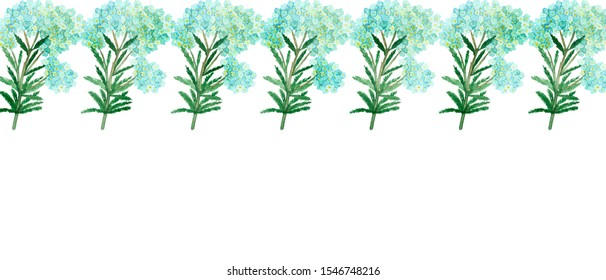 Watercolor hand painted nature romantic banner line composition with blue flower yarrow and green branches and leaves on the white background for invitations and cards with the space for text