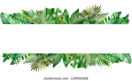 Watercolor hand painted nature summer jungle banner with green tropical different leaves and fern branches for invitations and greeting cards with the space for text on the white background