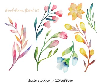 Watercolor hand painted plants and flowers. Set of floral elemnts isolated on white. Hand drawn decorative greenery collection perfect for print, poster, card making and scrapbooking design