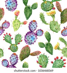 Watercolor hand painted tropical cactus. Seamless pattern on a white background. Watercolor cactus.